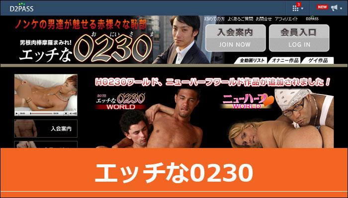 エッチな0230